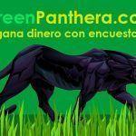 ▷ Greenpanthera ✅ Gana Dinero Completando Encuestas |5€ GRATIS|