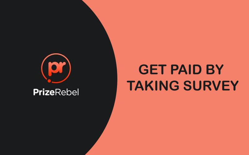 PrizeRebel 🥇 PrizeRebel   Que es y como Funciona   ▷INFO 2021◁ Encuestas